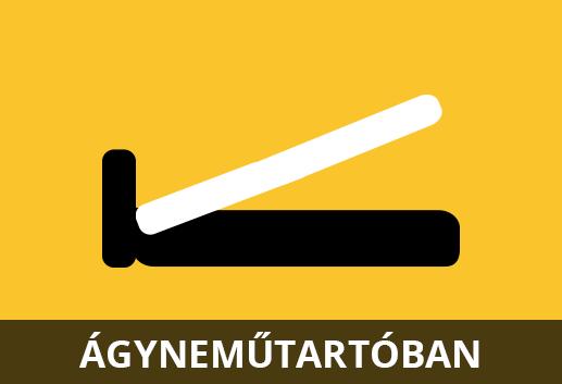 agyi_poloska_1-15